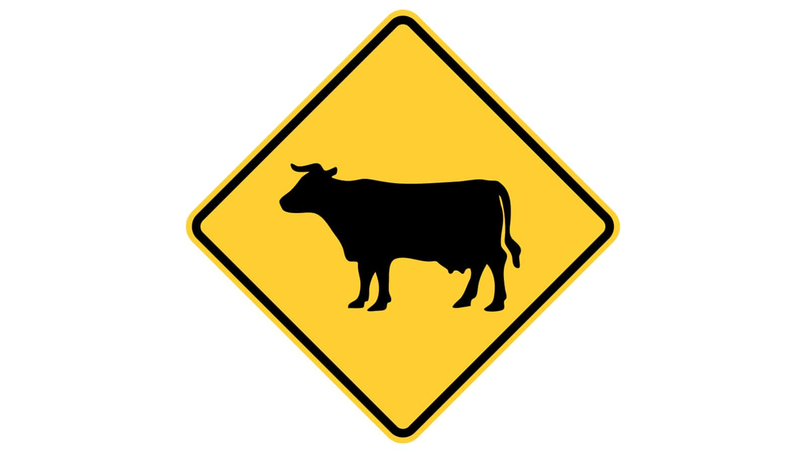Warning sign Cattle Crossing