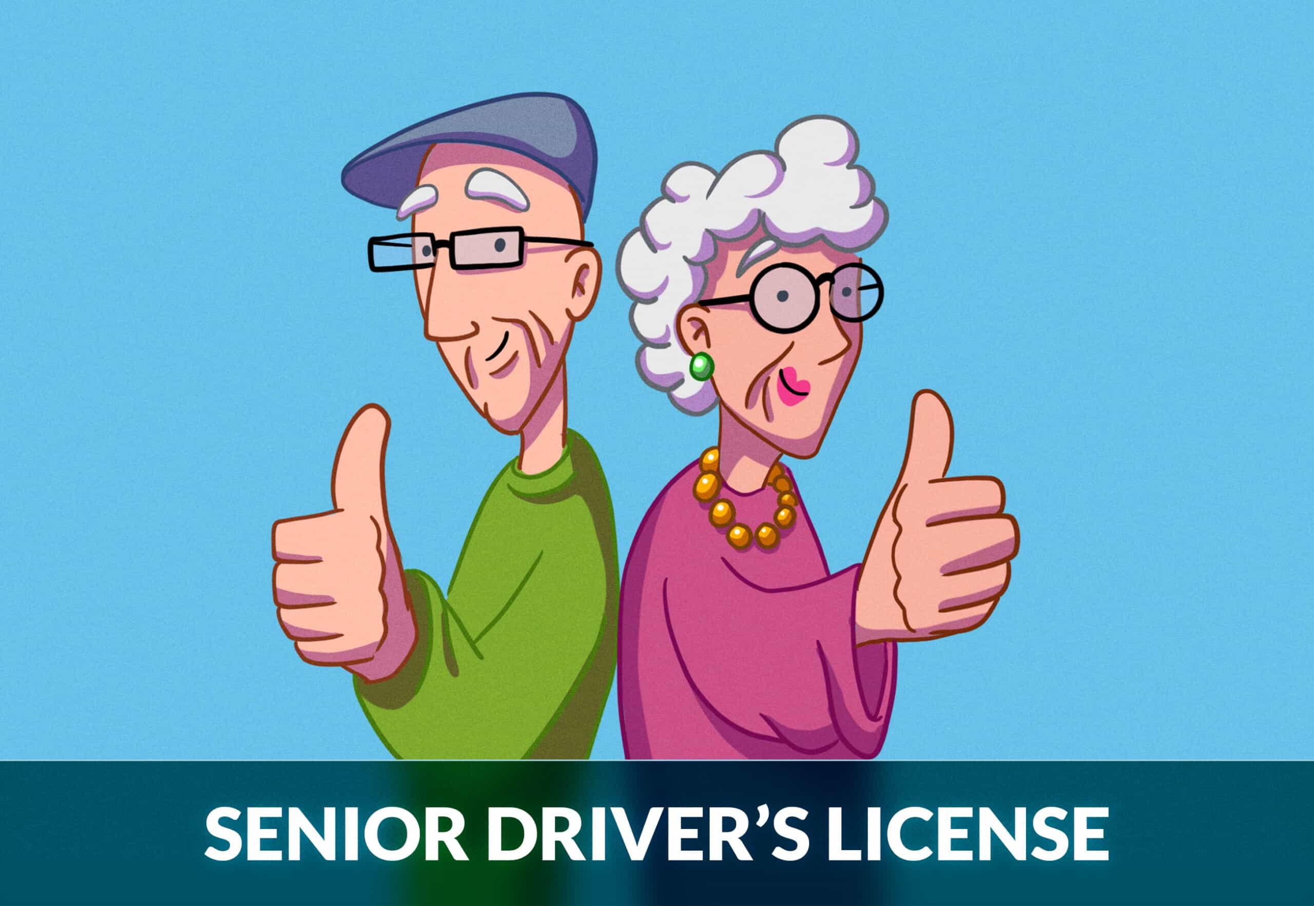 SENIOR DRIVER'S LICENSE
