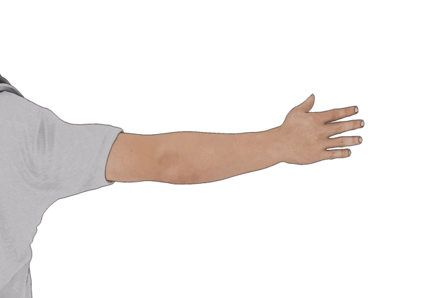 The 3 Basic Arm Signals for Driving Explained